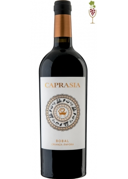 Red Wine Caprasia Anfora